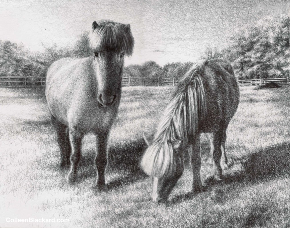 "Blondel and Harpa, 2012,  Ballpoint on paper 11""x14"" Private Collection"