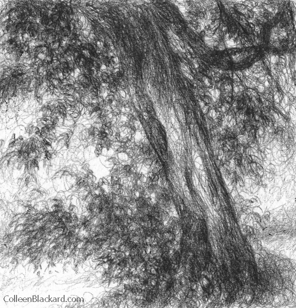 "Shade, 2010, Ballpoint on paper 4""x4"", Private Collection"