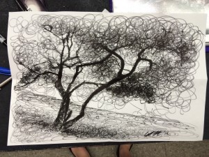 5th period 20 minute drawing