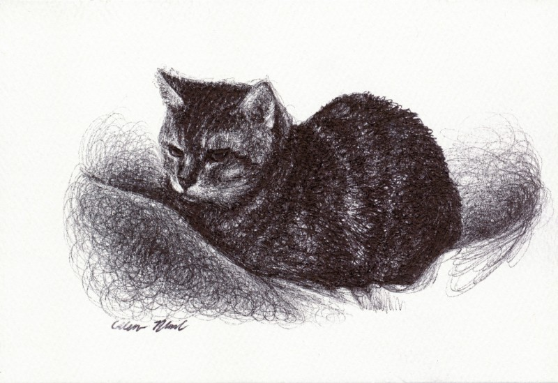 "Miss Priss, 2014 Ballpoint pen on paper greeting card 4""x3"" Private Collection.  Prints on greeting cards are also available on the <a href=""http://theartofcolleenblackard.bigcartel.com/product/cat-cards-miss-priss"">online store</a>."