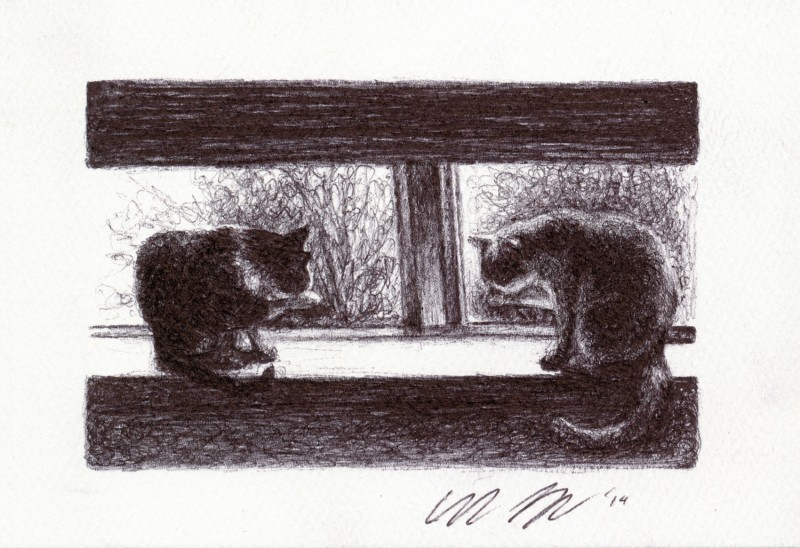 "Paws, 2014 Ballpoint pen on paper greeting card 4""x3"" Available. Prints on greeting cards are also available on the <a href=""http://theartofcolleenblackard.bigcartel.com/product/cat-cards-paws"">online store</a>."