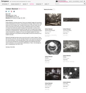 Artist Profile on ArtSpace