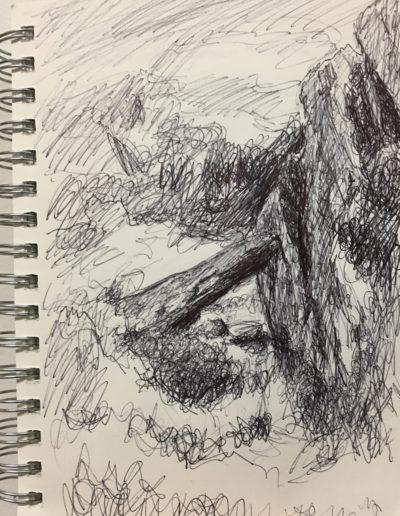 sketches1web