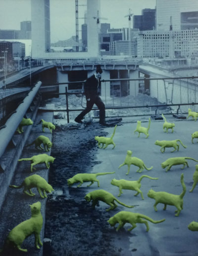 Sandy Skoglund, Cats In Paris, 1993, Photolithograph, Yvonamor Palix Fine Arts, Houston, TX